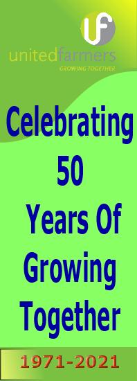 UF at 50